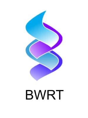 BrainWorking Recursive Therapy Training begins